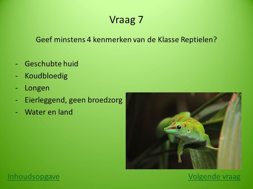 Vraag 7 Geef minstens 4 kenmerken van de Klasse Reptielen? ‐Geschubte huid ‐Koudbloedig ‐Longen ‐Eierleggend, geen broedzorg ‐Water en land Inhoudsopg