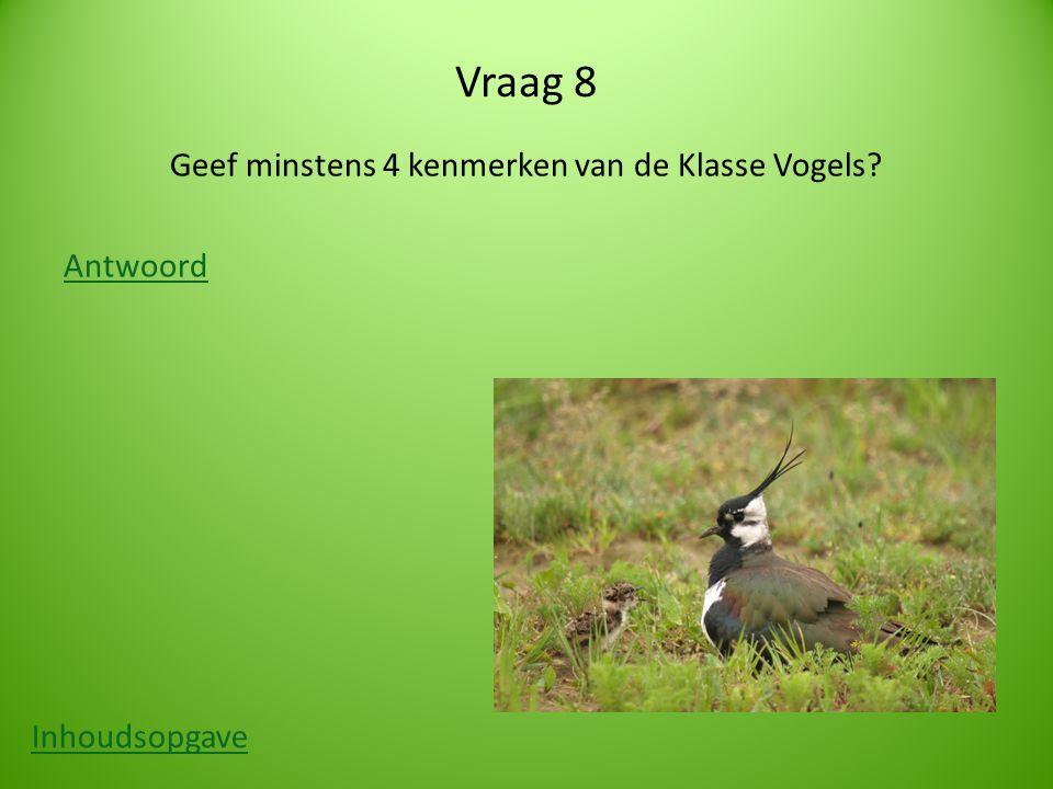 Vraag 8 Geef minstens 4 kenmerken van de Klasse Vogels? Antwoord Inhoudsopgave