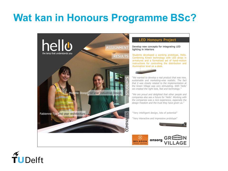 Wat kan in Honours Programme BSc?