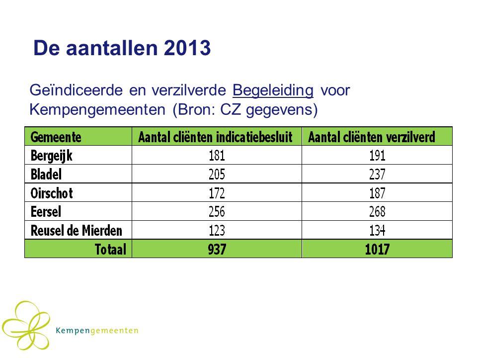 De aantallen 2013 Geïndiceerde en verzilverde Begeleiding voor Kempengemeenten (Bron: CZ gegevens)