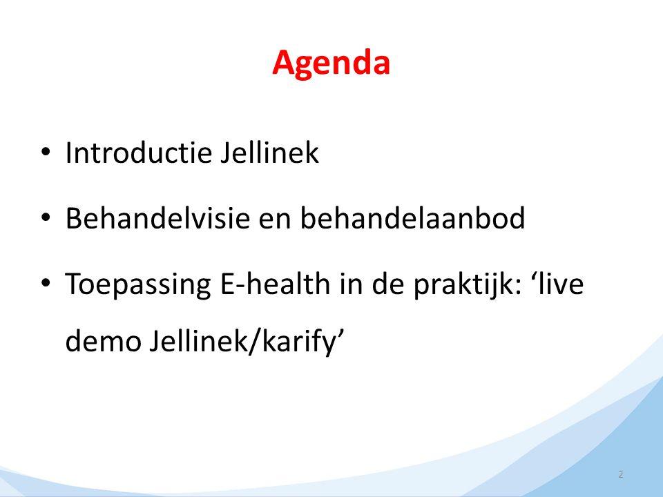 2 Agenda Introductie Jellinek Behandelvisie en behandelaanbod Toepassing E-health in de praktijk: 'live demo Jellinek/karify'