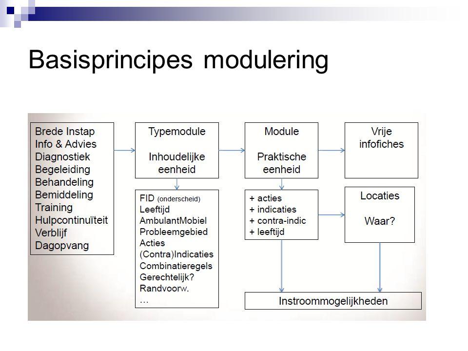 Basisprincipes modulering