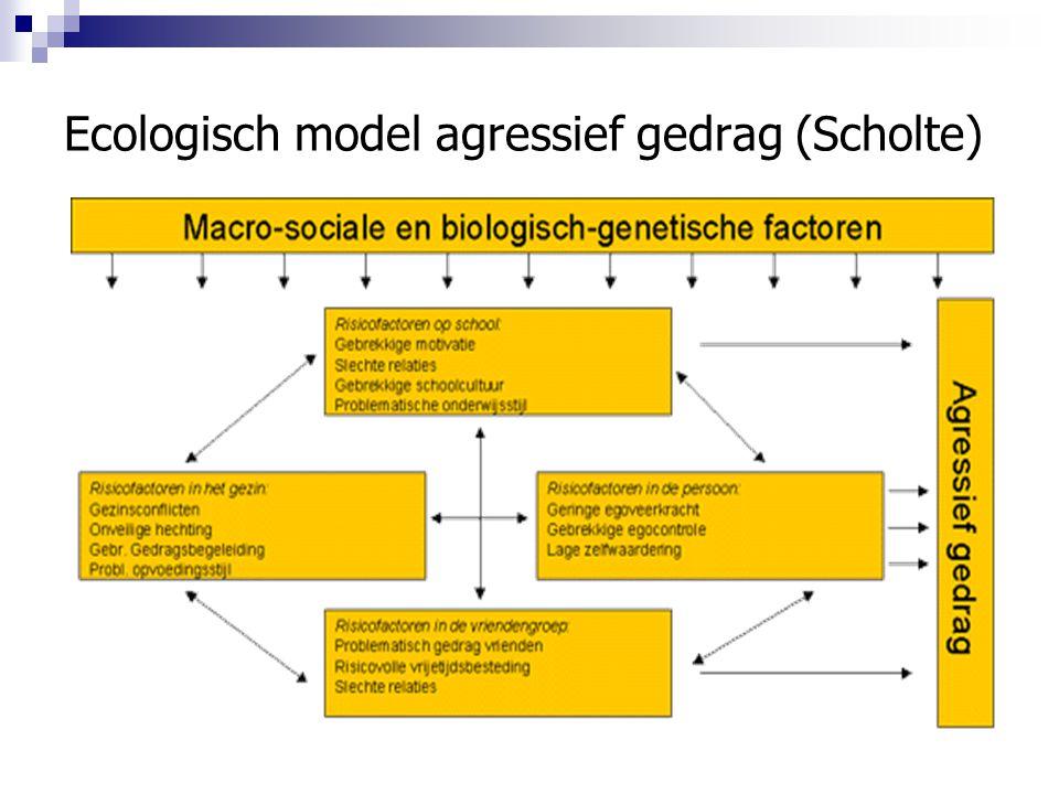 Ecologisch model agressief gedrag (Scholte)