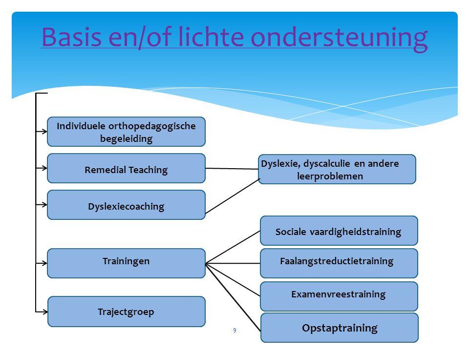   Remedial teaching: voor leerlingen met ernstige didactische problemen waarbij ondersteuning op klasniveau ontoereikend is.