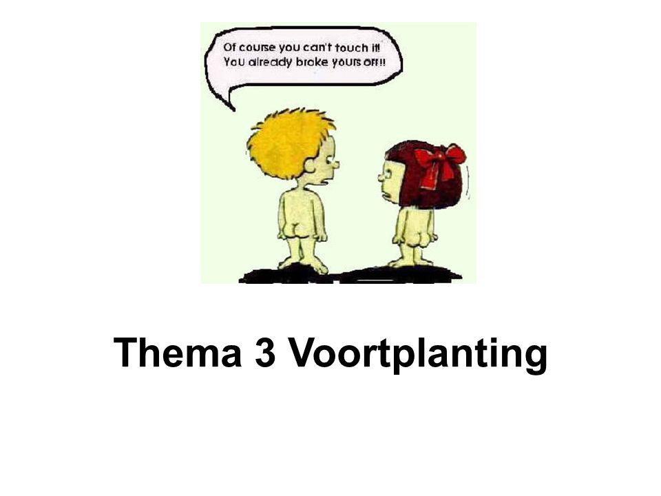 Thema 3 Voortplanting
