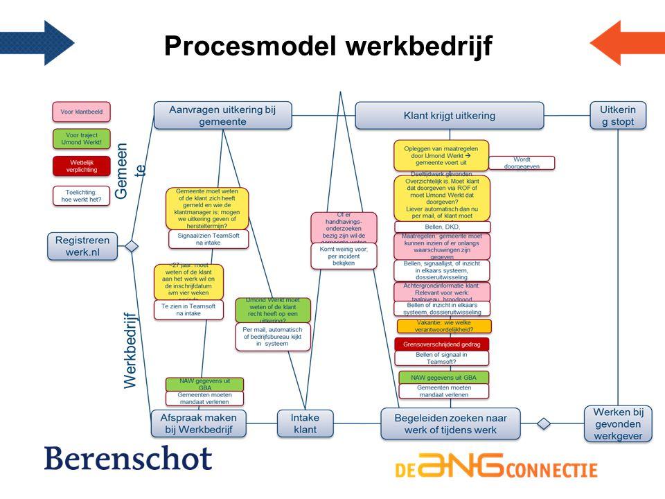 Procesmodel werkbedrijf