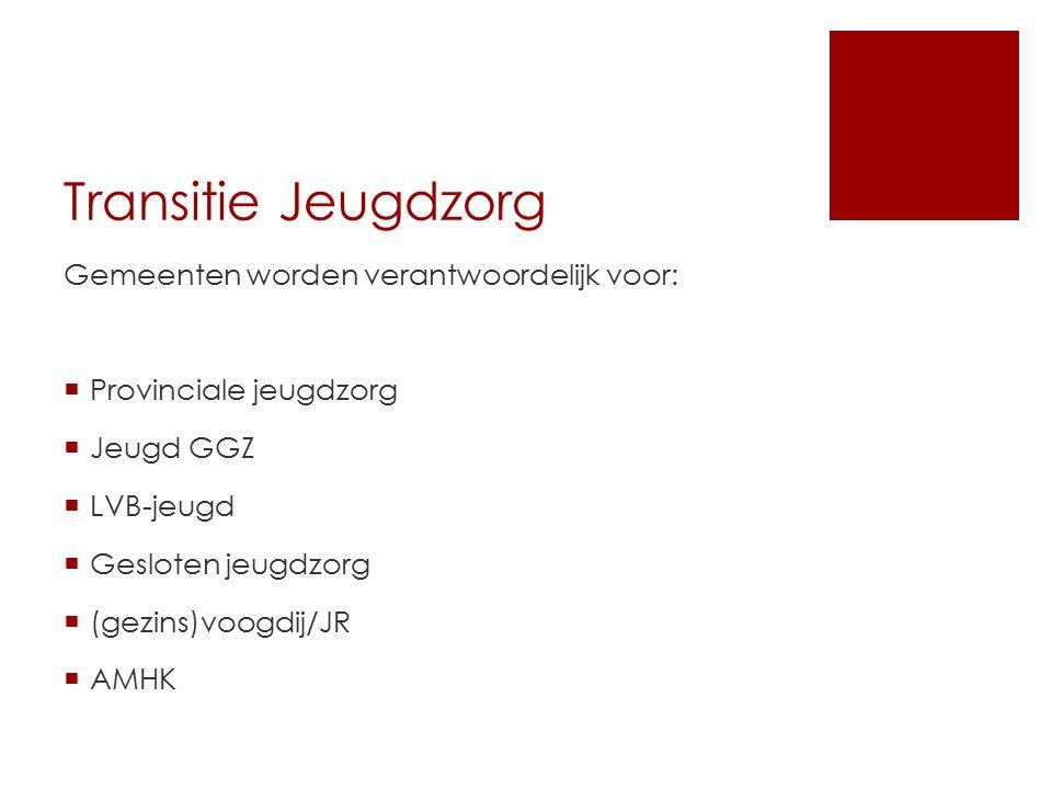 Brabant Noord-Oost  19 gemeenten; 1gezamenlijke visie  Functioneel ontwerp