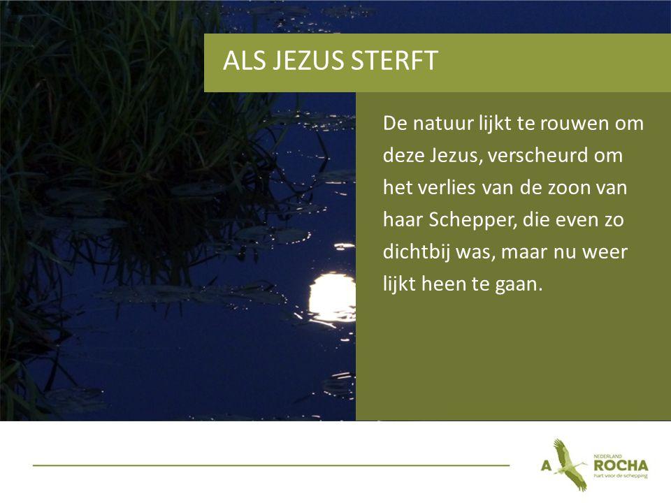 ALS JEZUS STERFT De natuur lijkt te rouwen om deze Jezus, verscheurd om het verlies van de zoon van haar Schepper, die even zo dichtbij was, maar nu weer lijkt heen te gaan.