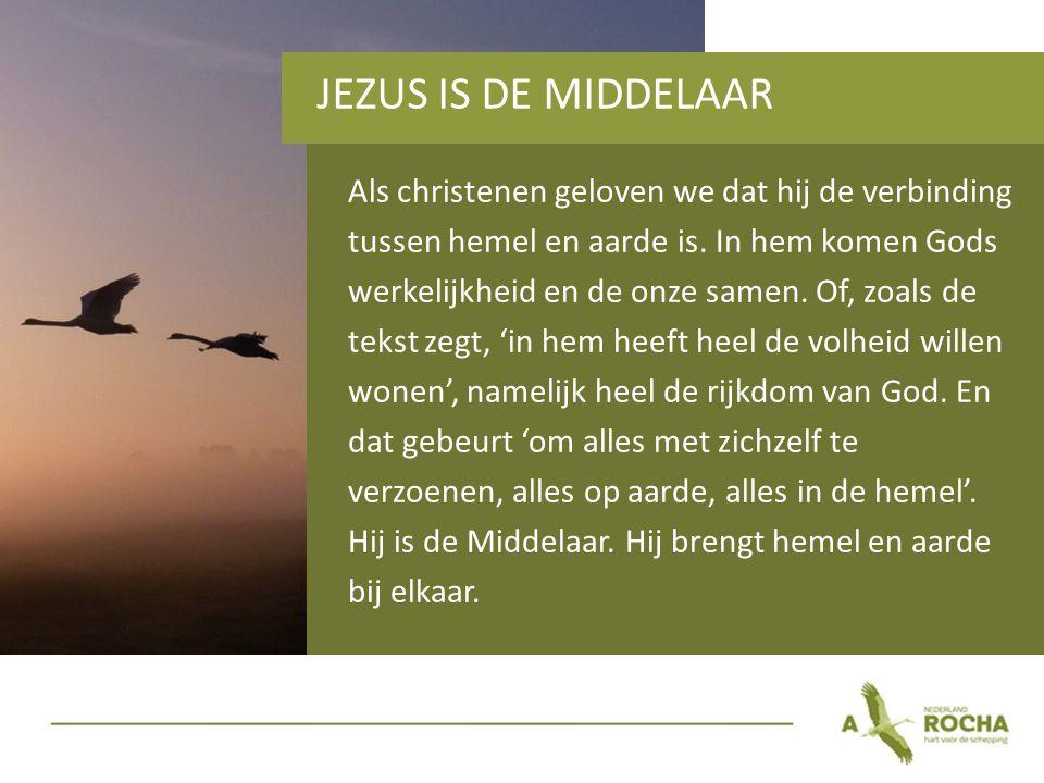 JEZUS IS DE MIDDELAAR Als christenen geloven we dat hij de verbinding tussen hemel en aarde is.