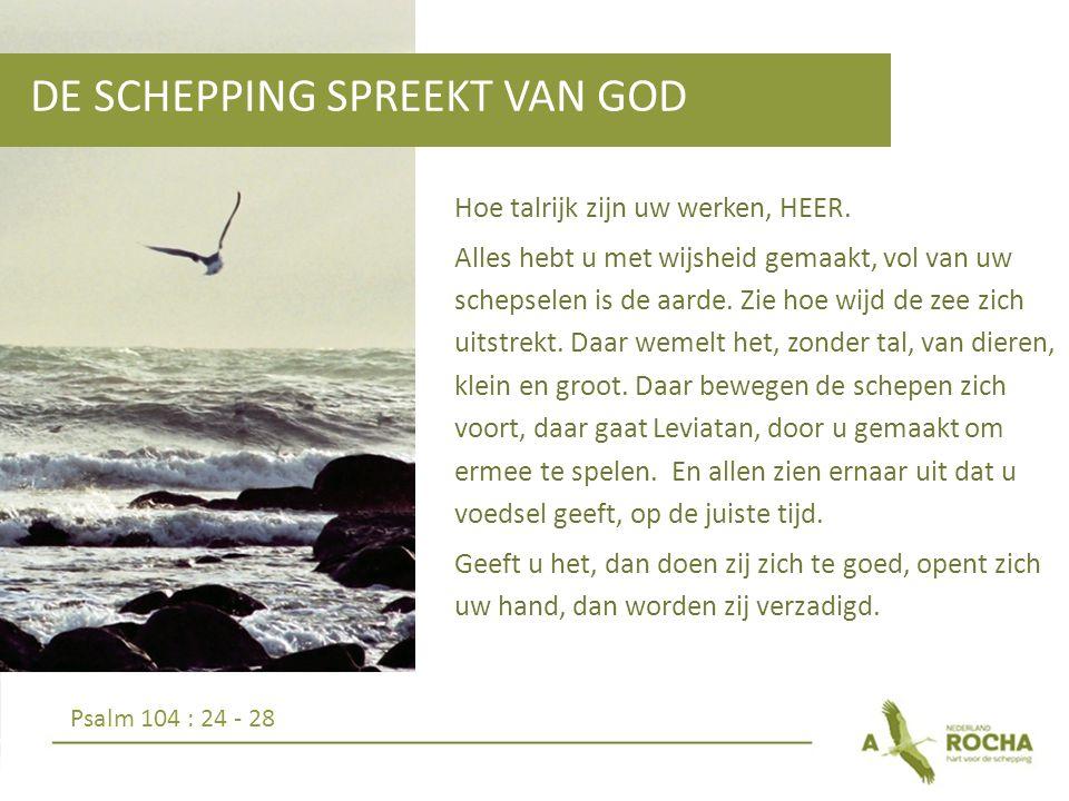 DE SCHEPPING SPREEKT VAN GOD Hoe talrijk zijn uw werken, HEER.