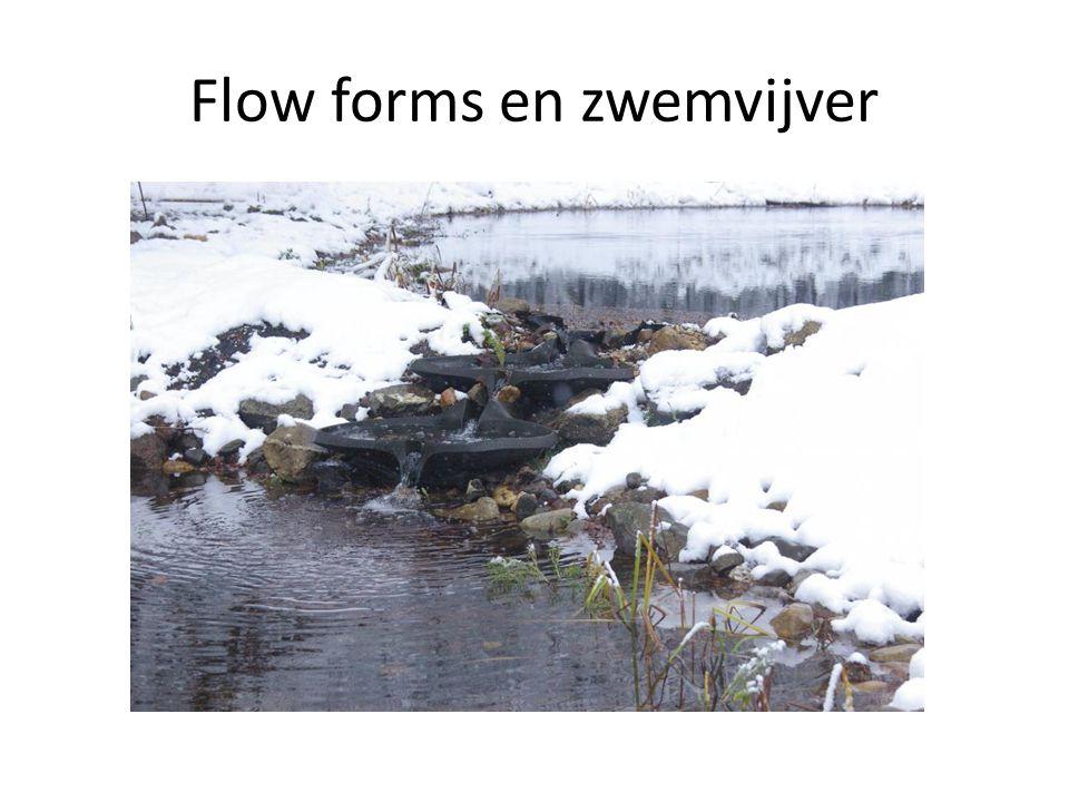 Flow forms en zwemvijver