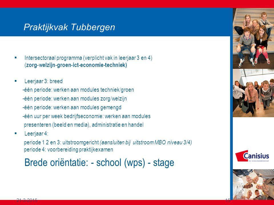 21-3-201515 Praktijkvak Tubbergen  Intersectoraal programma (verplicht vak in leerjaar 3 en 4) ( zorg-welzijn-groen-ict-economie-techniek)  Leerjaar