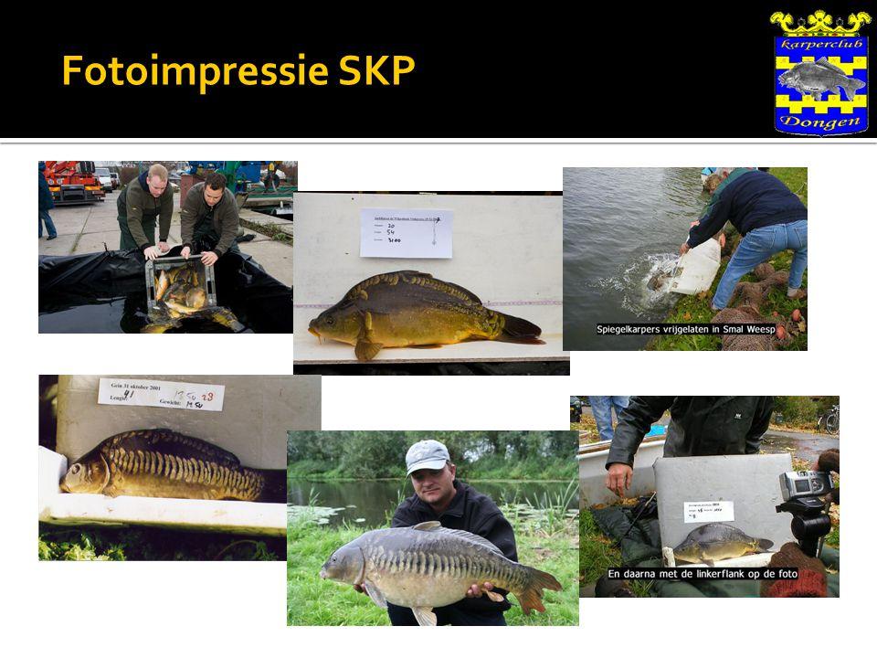 Fotoimpressie SKP