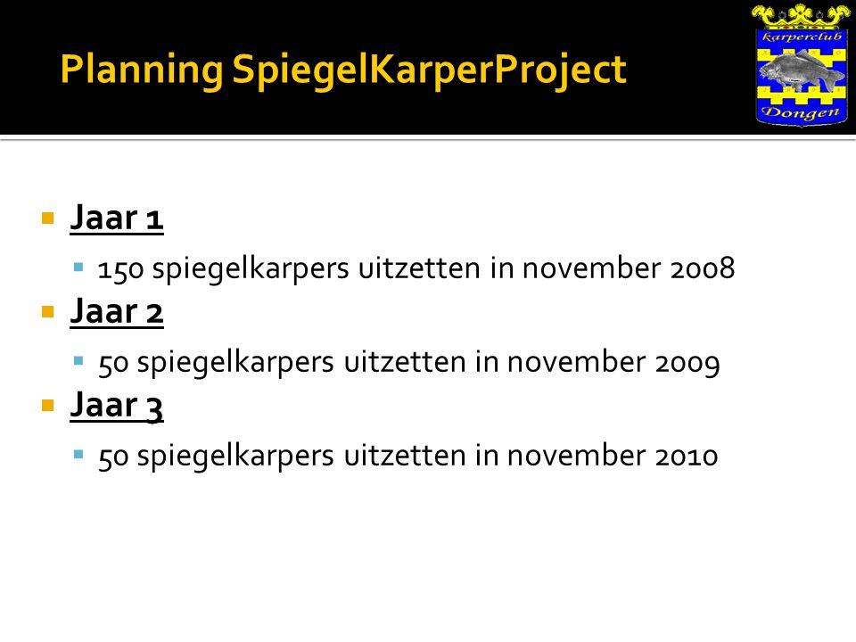 Planning SpiegelKarperProject  Jaar 1  150 spiegelkarpers uitzetten in november 2008  Jaar 2  50 spiegelkarpers uitzetten in november 2009  Jaar 3  50 spiegelkarpers uitzetten in november 2010