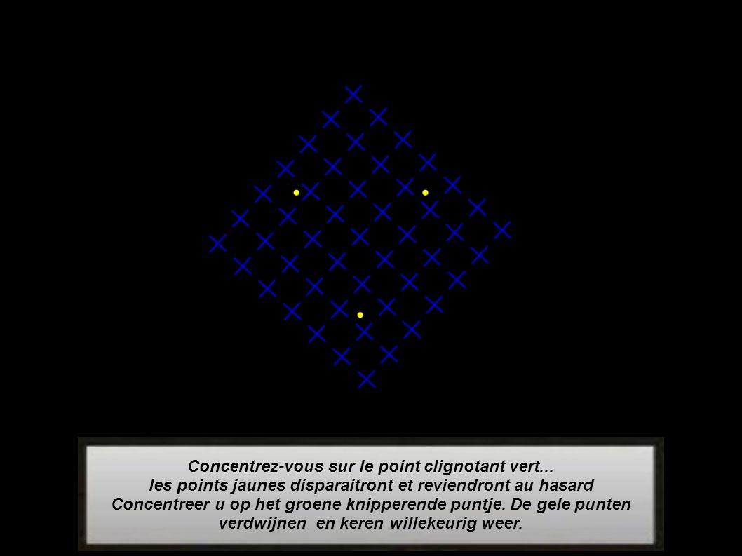 L image bouge à vos yeux...et pourtant c est une image fixe (jpeg) Het beeld beweegt voor je ogen.