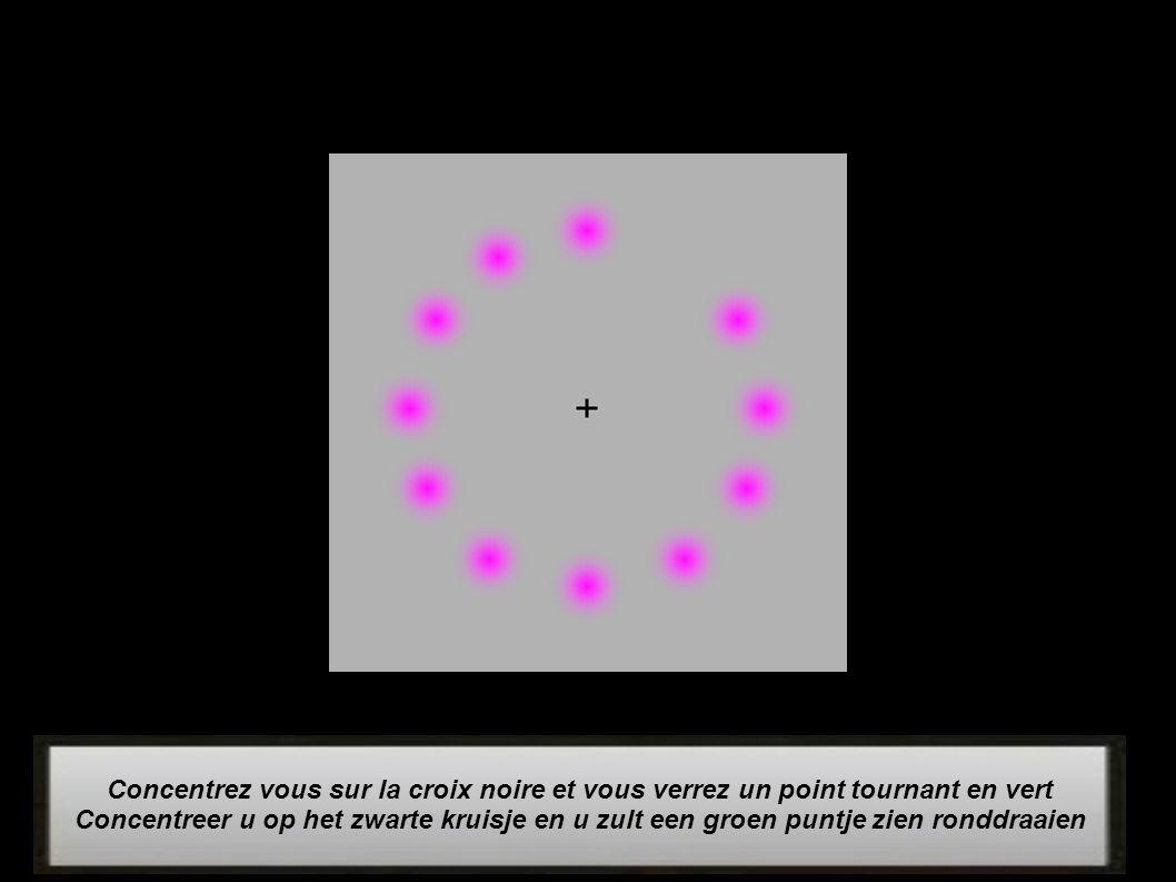 Concentrez vous sur la croix noire et vous verrez un point tournant en vert Concentreer u op het zwarte kruisje en u zult een groen puntje zien ronddraaien
