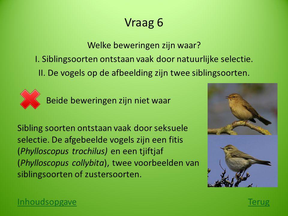Vraag 6 Welke beweringen zijn waar? I. Siblingsoorten ontstaan vaak door natuurlijke selectie. II. De vogels op de afbeelding zijn twee siblingsoorten