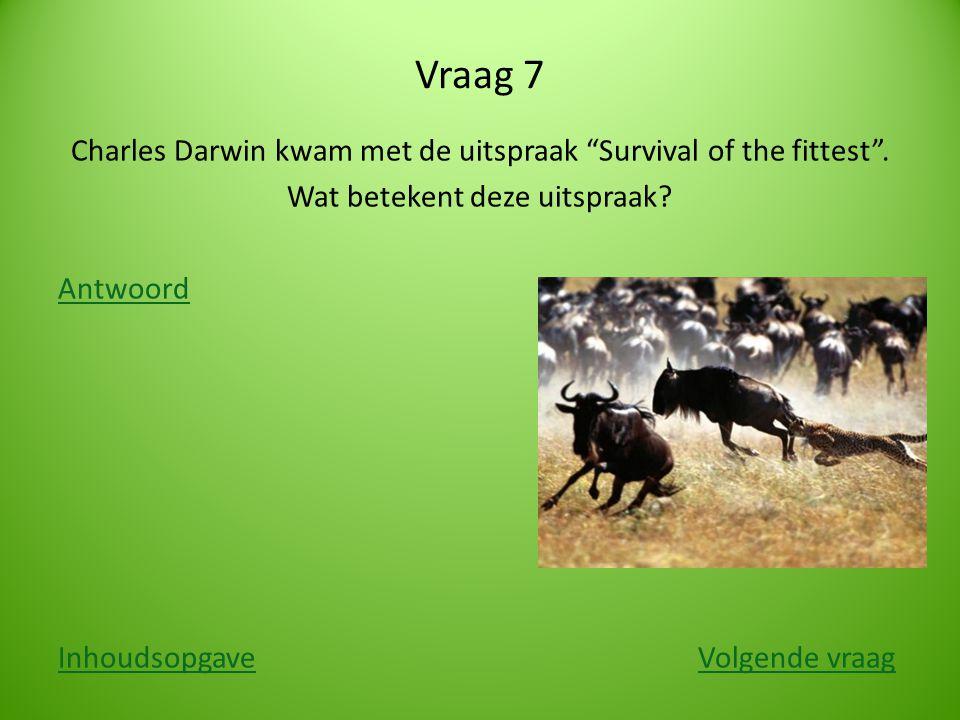"""Vraag 7 Charles Darwin kwam met de uitspraak """"Survival of the fittest"""". Wat betekent deze uitspraak? Antwoord InhoudsopgaveInhoudsopgave Volgende vraa"""