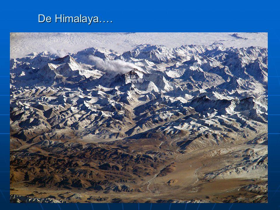 De Himalaya….