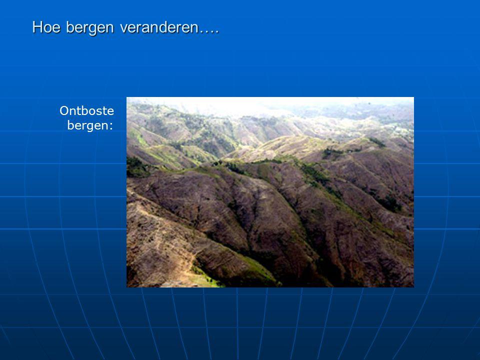 Ontboste bergen: