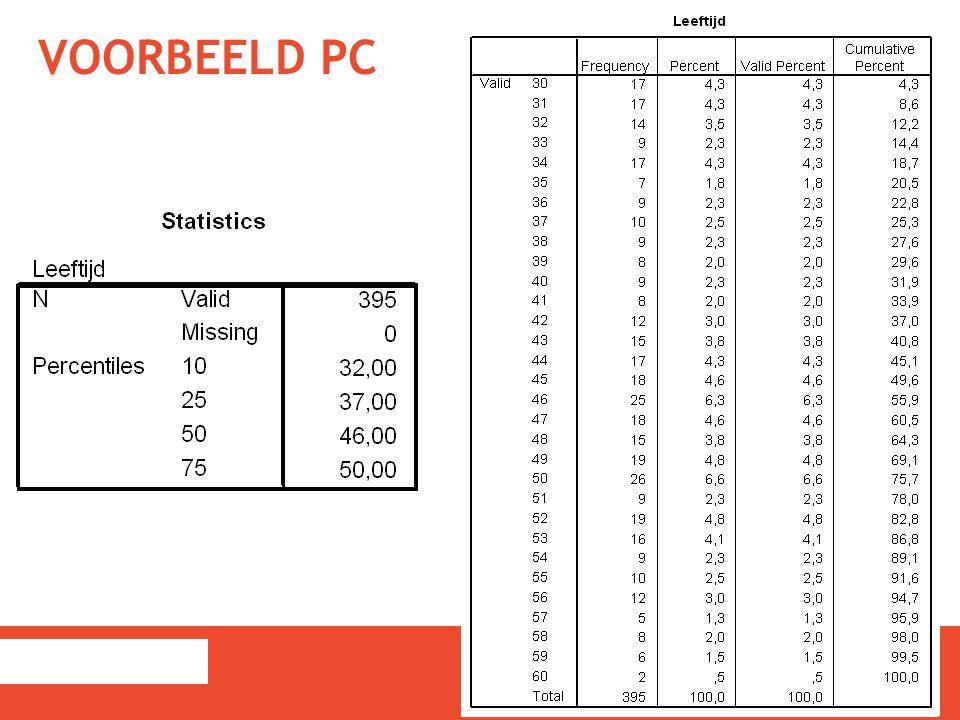 VOORBEELD PC