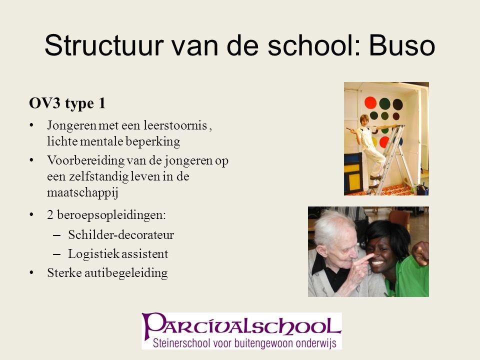Structuur van de school: Buso OV3 type 1 Jongeren met een leerstoornis, lichte mentale beperking Voorbereiding van de jongeren op een zelfstandig leve