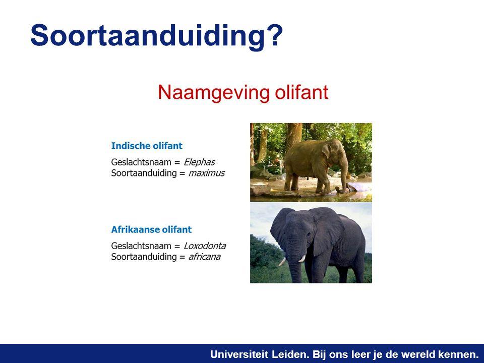 Universiteit Leiden. Bij ons leer je de wereld kennen. Soortaanduiding?