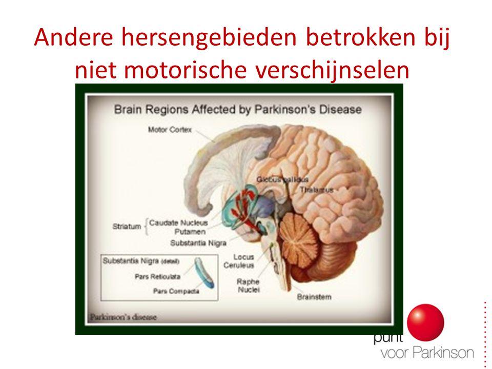 Andere hersengebieden betrokken bij niet motorische verschijnselen