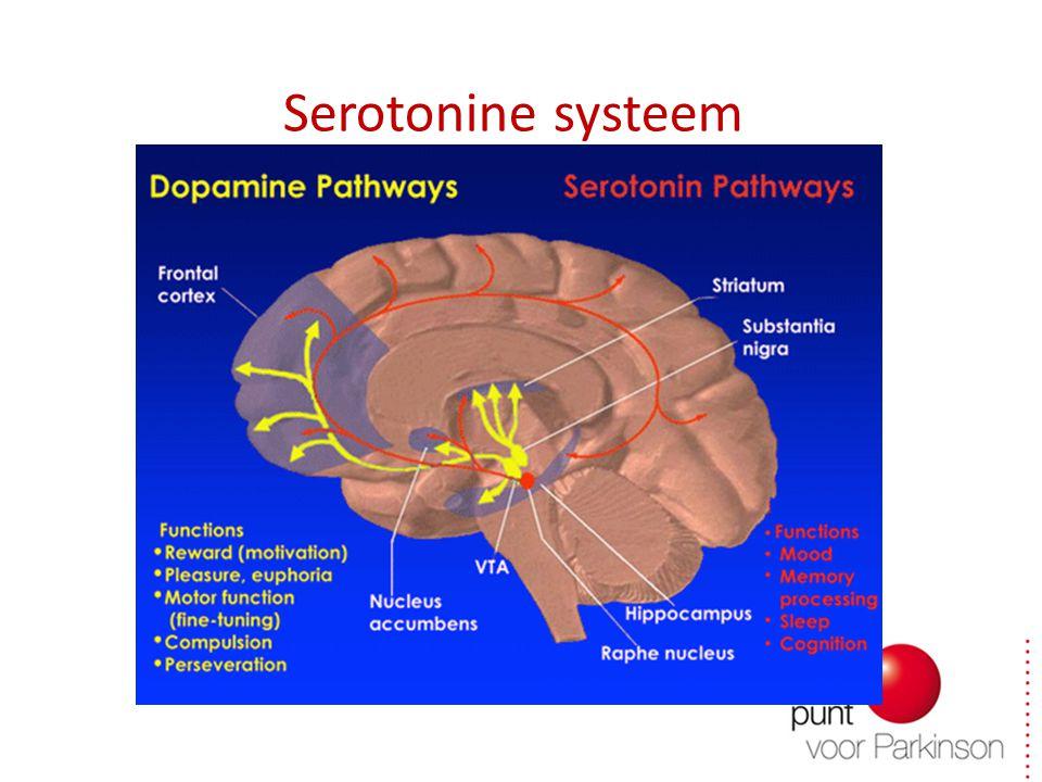 Serotonine systeem