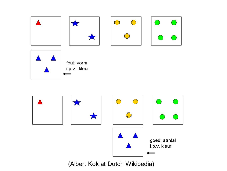 (Albert Kok at Dutch Wikipedia)