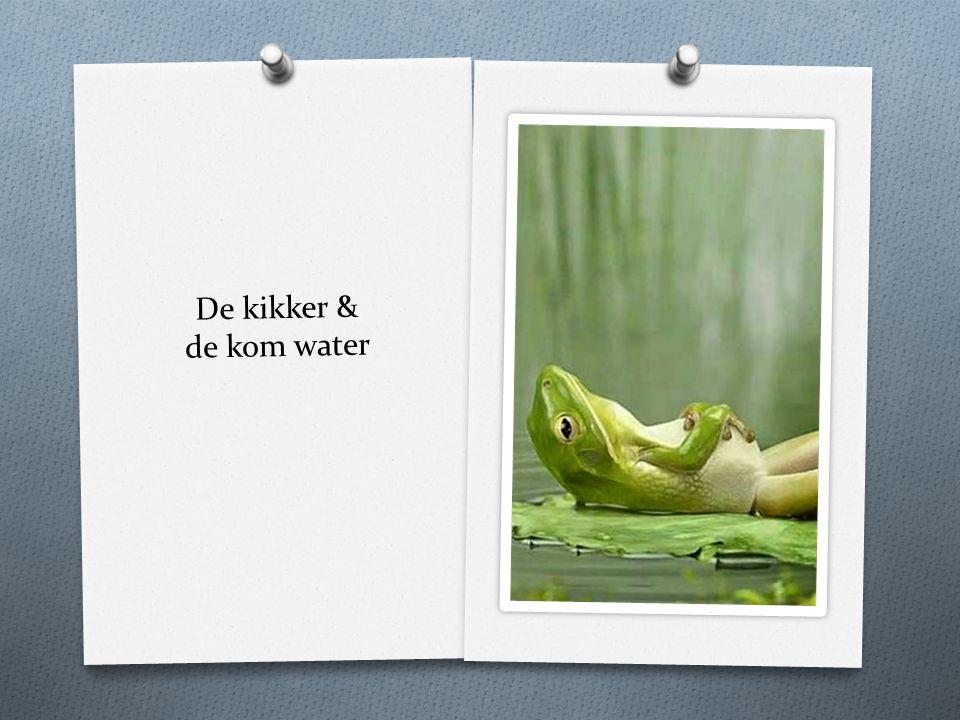 De kikker & de kom water