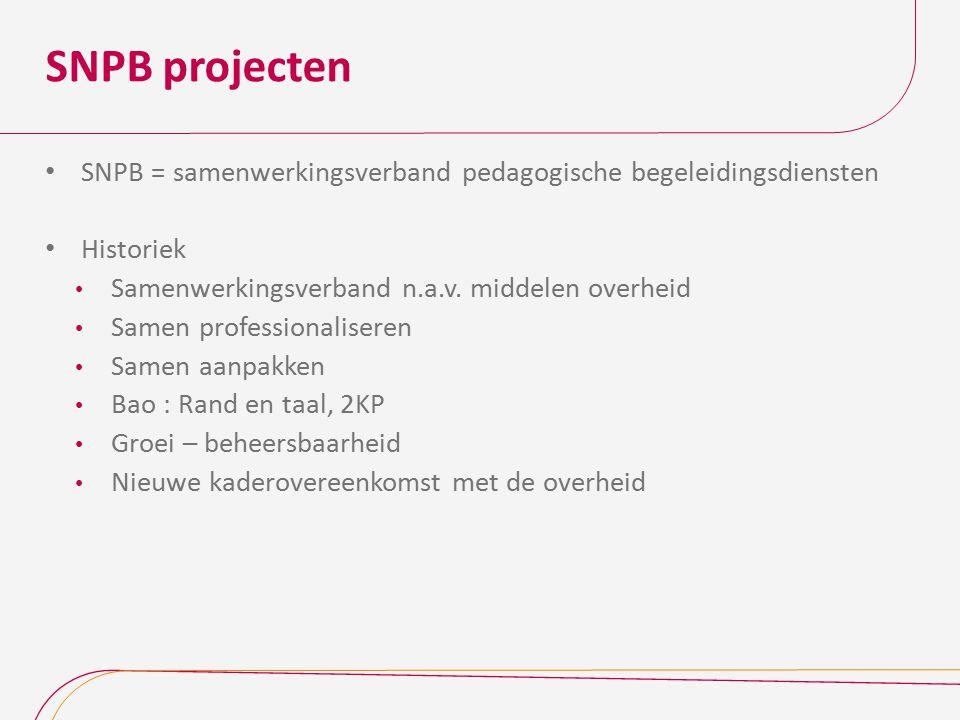 SNPB projecten SNPB = samenwerkingsverband pedagogische begeleidingsdiensten Historiek Samenwerkingsverband n.a.v. middelen overheid Samen professiona
