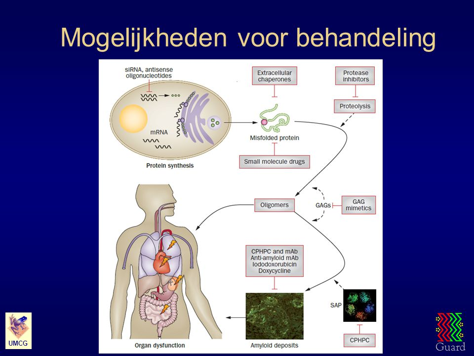 Guard UMC Groningen – Rheumatology & Clinical Immunology UMCG Behandeling met siRNA