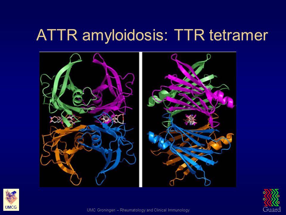 Guard UMC Groningen – Rheumatology and Clinical Immunology UMCG ATTR amyloidosis: TTR tetramer