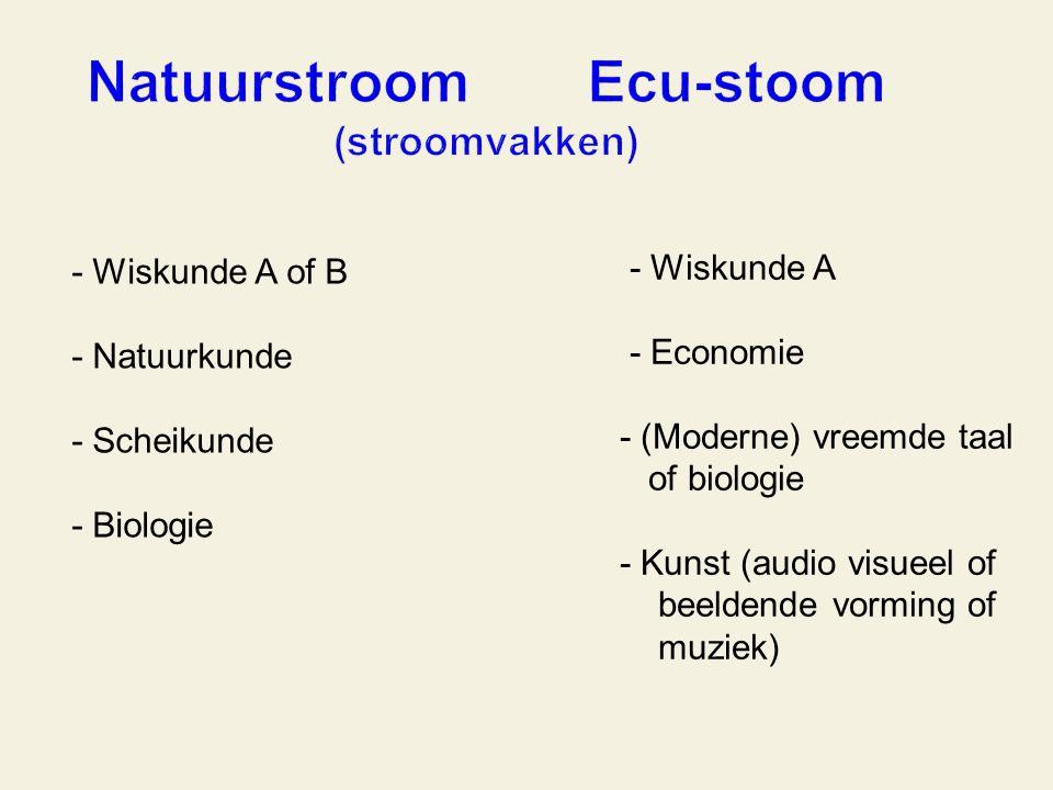 - Wiskunde A of B - Natuurkunde - Scheikunde - Biologie - Wiskunde A - Economie - (Moderne) vreemde taal of biologie - Kunst (audio visueel of beeldende vorming of muziek)