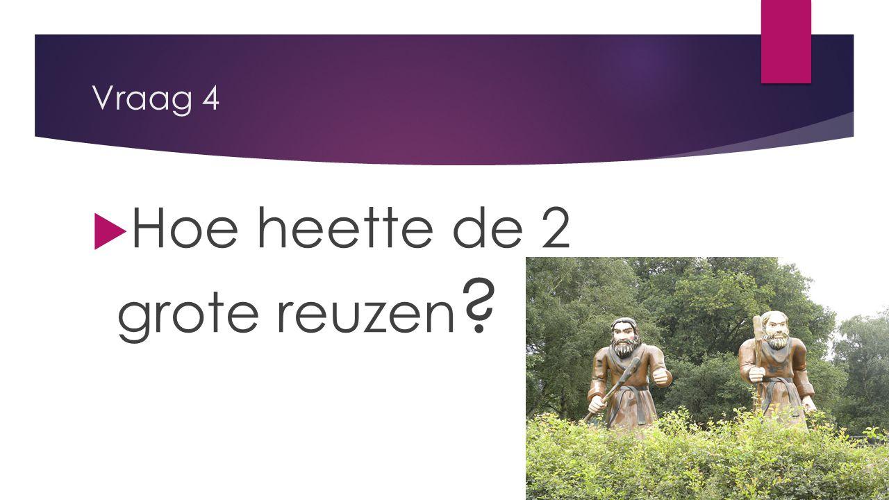 Vraag 4  Hoe heette de 2 grote reuzen ?
