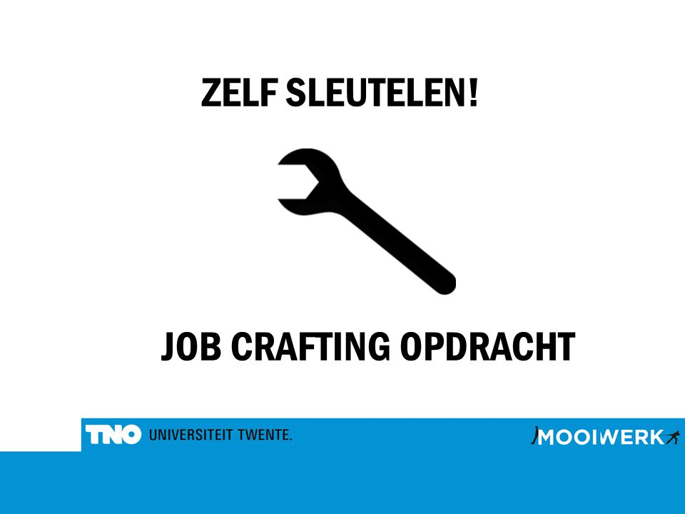 ZELF SLEUTELEN! JOB CRAFTING OPDRACHT