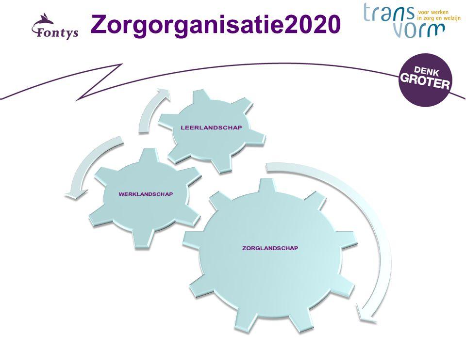 Zorgorganisatie2020