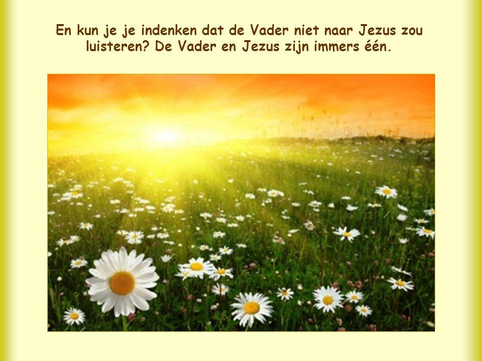 Wanneer Jezus aanwezig is waar mensen in wederzijdse liefde met elkaar verenigd zijn, is Hij het zelf die samen met ons bepaalde genaden aan de Vader