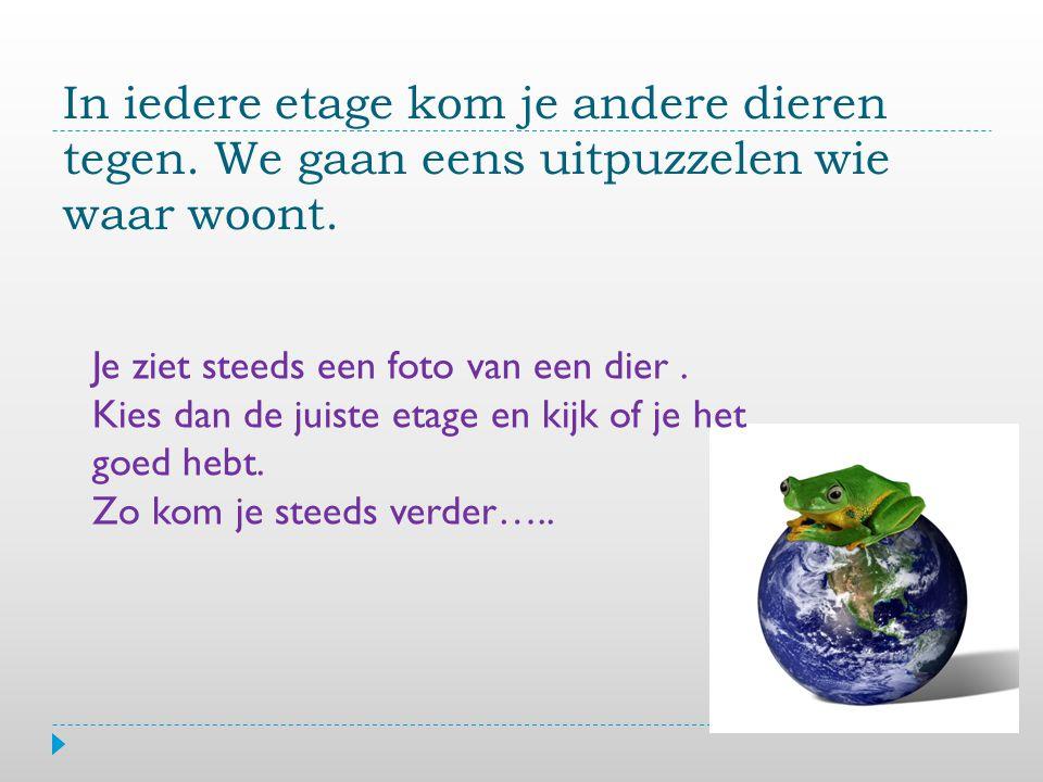 Woudreuzen Kroonlaag Lage bomen Bodemlaag Agouti Kies het goede antwoord.