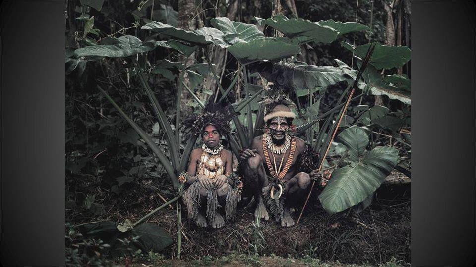 De Tribu Kalam Nieuw Guinea