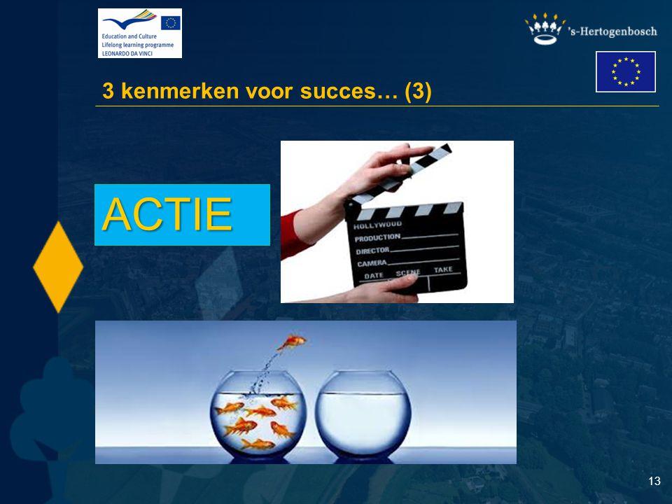 13 3 kenmerken voor succes… (3) ACTIE
