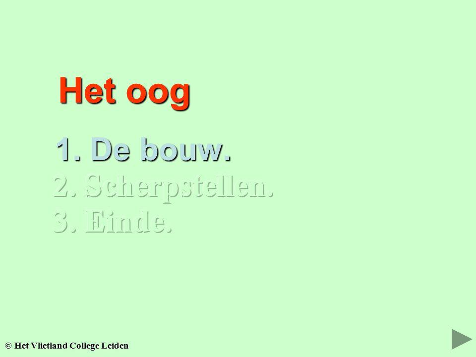 Het oog Het oog 1. De bouw. 1. De bouw. © Het Vlietland College Leiden