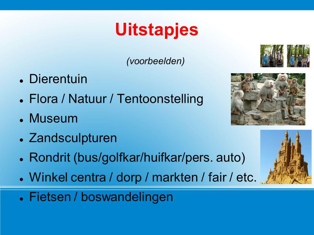 Uitstapjes (voorbeelden) Dierentuin Flora / Natuur / Tentoonstelling Museum Zandsculpturen Rondrit (bus/golfkar/huifkar/pers. auto) Winkel centra / do