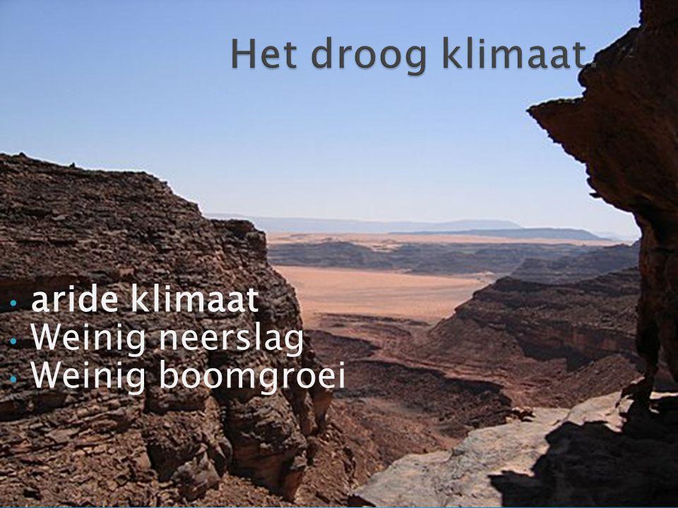aride klimaat Weinig neerslag Weinig boomgroei