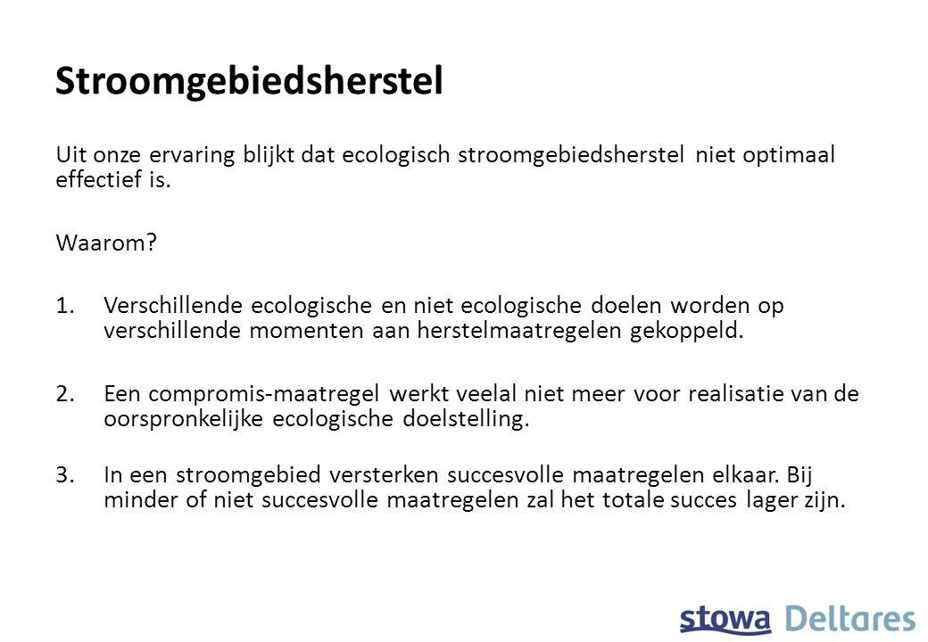 Stroomgebiedsherstel Uit onze ervaring blijkt dat ecologisch stroomgebiedsherstel niet optimaal effectief is. Waarom? 1.Verschillende ecologische en n
