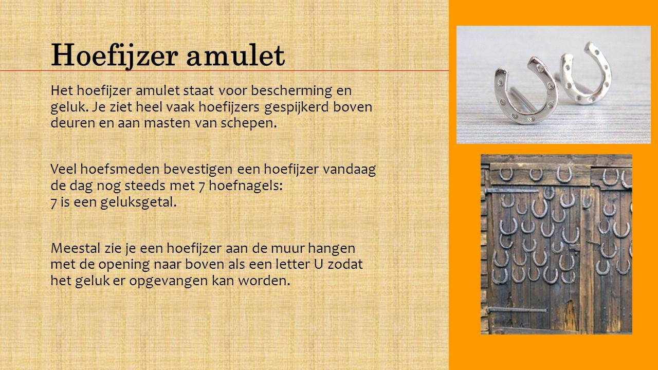 Hoefijzer amulet Het hoefijzer amulet staat voor bescherming en geluk.