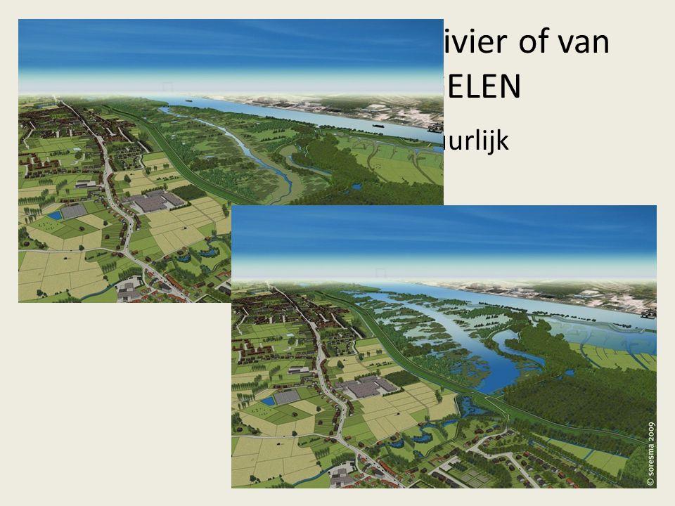 2. Een probleem van de rivier of van de riool? MAATREGELEN Buffering op waterlopen = natuurlijk overstromingsgebied  vb. Sigmaplan (Schelde)