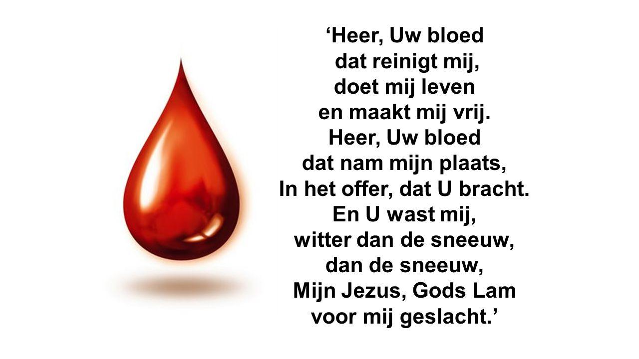 'Heer, Uw bloed dat reinigt mij, doet mij leven en maakt mij vrij. Heer, Uw bloed dat nam mijn plaats, In het offer, dat U bracht. En U wast mij, witt
