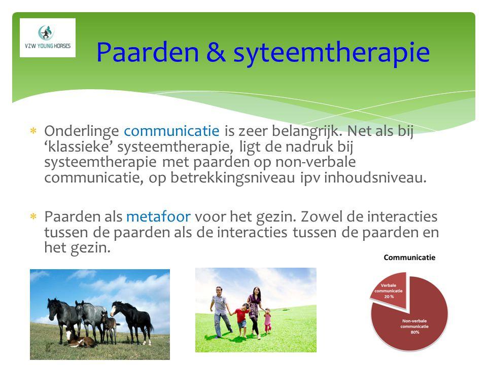 Meerwaarde van systeemtherapie met assistentie van paarden:  Metaforen,  Gelijkende relationele eigenschappen kudde-gezin,  Co-therapie van 2 therapeuten en paarden als sensitieve levende wezens,  Krachtig, beklijvend  Unieke ervaring op een andere weide,  … Synthese Synthese
